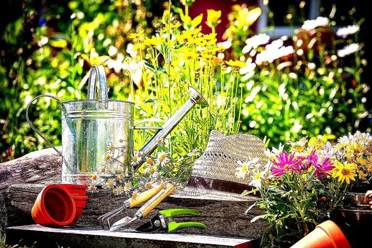 Öle für deinen Garten